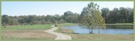 Green_lake path_2013-03-17