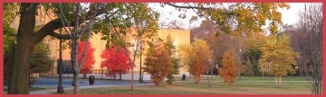 Orange_Rogers school_2011-11-06