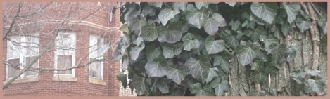 Red_brick and ivy_2013-04-08