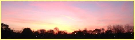 2013-05-31_Yellow Dawn
