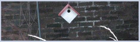 Gray_bird house_2012-07-31
