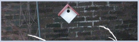 Gray_bird house_2012-07-31