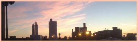 Pink_dawn