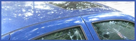 Blue_car roof_2012-07-30