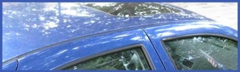 Blue_car roof_2012-07-30
