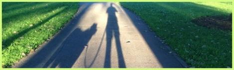 green_shadows