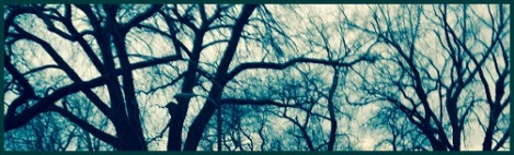 green_branches