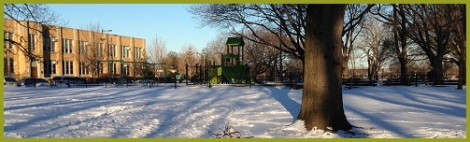green_winter school