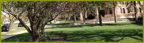 gree_tree campus