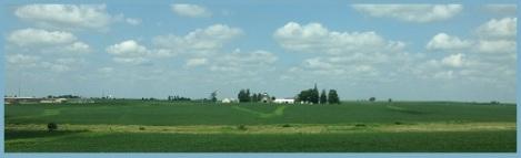 blue_farm