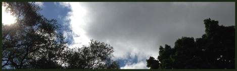 green_sky