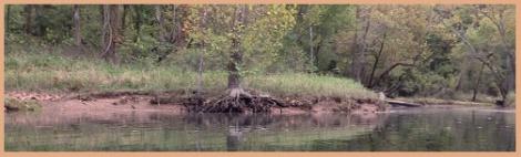 brown_river bank