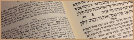 brown_Bible