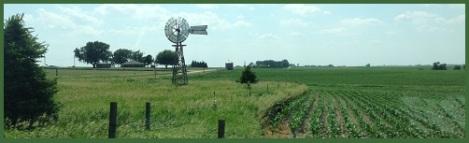 green_windmill